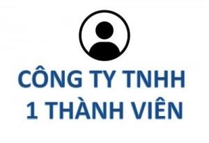 Thành Lập Công Ty TNHH 1 Thành Viên Tại Bình Dương