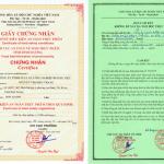 giấy phép vệ sinh an toàn thực phẩm tại Bình Dương