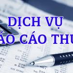 Dịch vụ báo cáo thuế tại Thủ Dầu Một