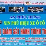 PHX11