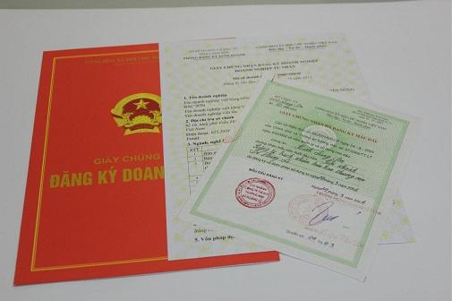 giấy phép kinh doanh mới