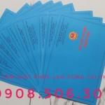 làm giấy phép lao động cho người nước ngoài tại Thuận An